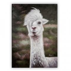 Cool Lama Ölbild handgemalt auf Leinwand 70x100cm - Ölgemälde