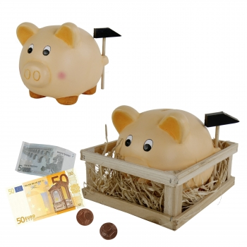 Spardose, Sparbuechse - Sparschwein im Stall mit Hamm