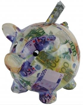 Spardose Euro Sparschwein Sparbuechse Euronote