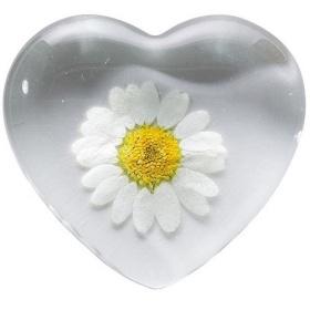 Margarite Glasherz - Flower Power Herz mit echter Blüte - Handschmeichler RÄDER Design