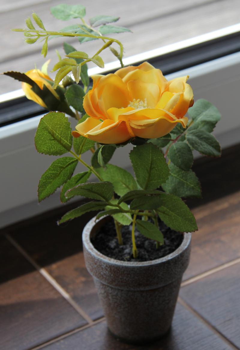 Gemeinsame Blumentopf gelbe Rosen - Kunstblumen im Terrakottatopf @SU_54