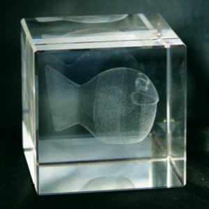 3D Laser GlasKristall Würfel mit Fischmotiv - Glasobjekt Looky Kugelfisch grinsend im Kristallwürfel - Lasertechnik