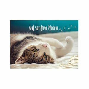 """Doppelkarte Katze- Grußkarte für Katzenfreunde - getigerter Kater """"Auf sanften Pfoten§"""