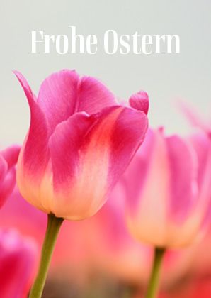 Osterkarte Doppelkarte - Frohe Ostern