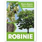 """Samenkarte - Baumkarte mit Robiniensamen - Robine Baum des Jahres 2020 - """"Bäume für das Leben"""""""