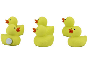 Mini Magnet Enten - 6er Set enten Magnete